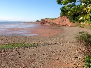 on the beach at Cape Blomidon