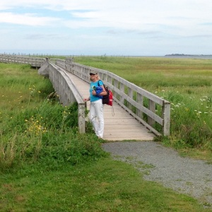 boardwalk to Rushton's Beach