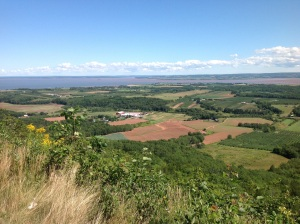 view from the approach to Cape Blomidon