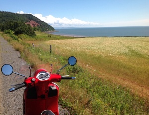 along the road to Cape Blomidon